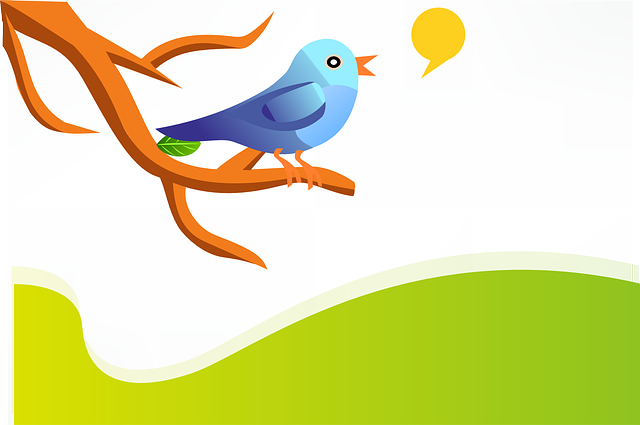 5 Tools to Help You Get Free Twitter Followers