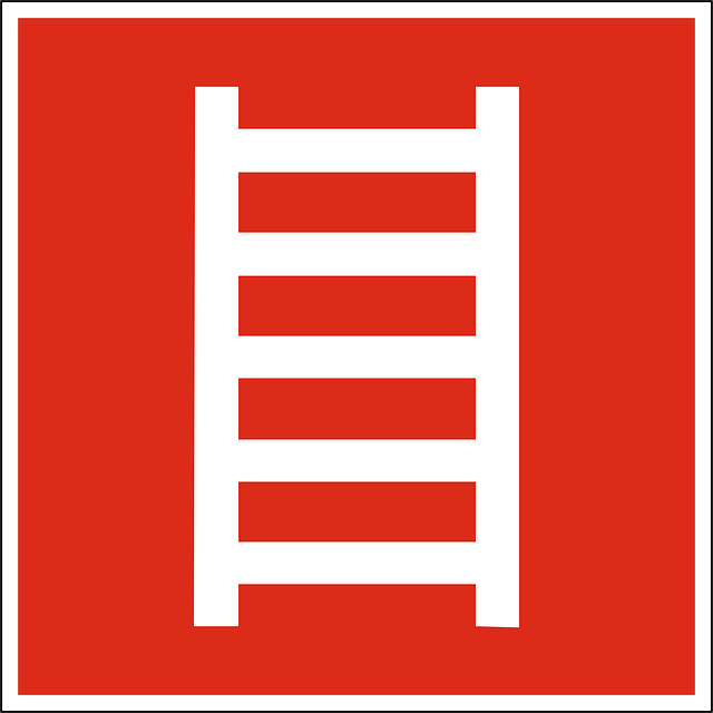Business Ladder