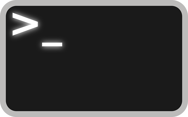 Linux Bash Terminal - Art