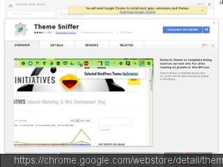 WordPress Theme Sniffer