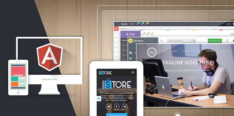 18_Best_Angular_JS_Themes_and_Templates_785