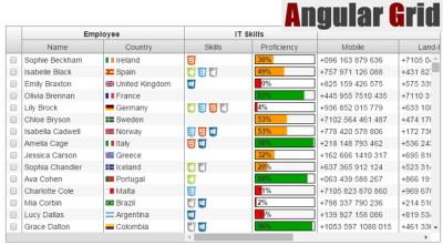 angular-grid