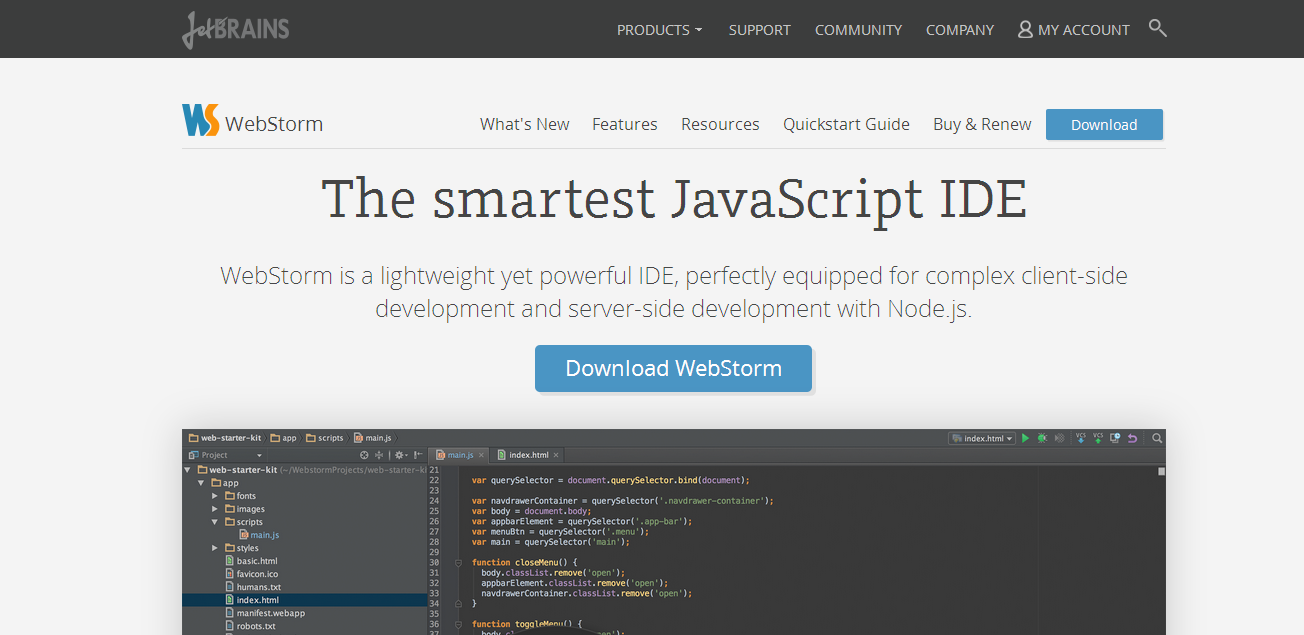 best ide for javascript