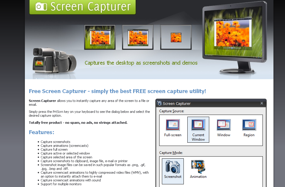 Screen Capturer