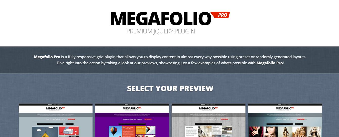 Megafolio Pro