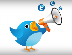 In 5 Steps Learn- How To Rock on Twitter 1.1_805