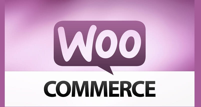 10 WooCommerce payment gateways for WordPress - Copy