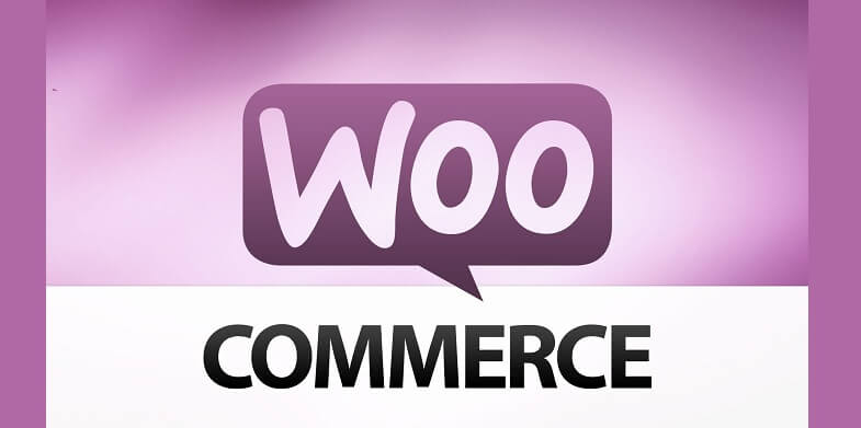 10 WooCommerce payment gateways for WordPress