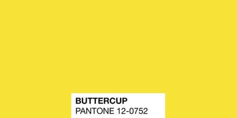 Buttercup 12-0752
