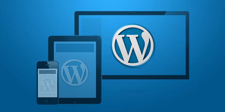Responsive-WordPress-Themes-785-391