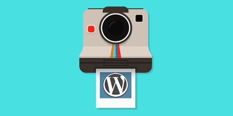 10-Photography-WordPress-Themes-785X391