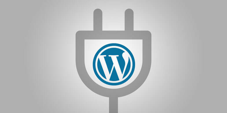 10-WordPress-Plugins-You-Should-Use-When-Doing-Your-On-Page-Optimization-785X391