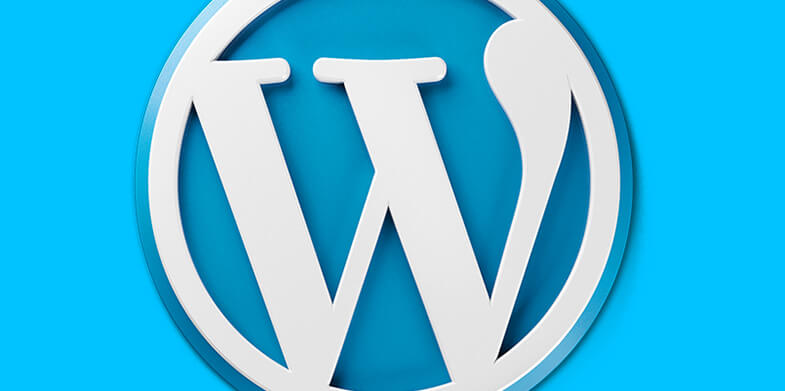 The-top-5-WordPress-Themes-For-Beginners-785X391
