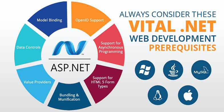 .NET Web Development1