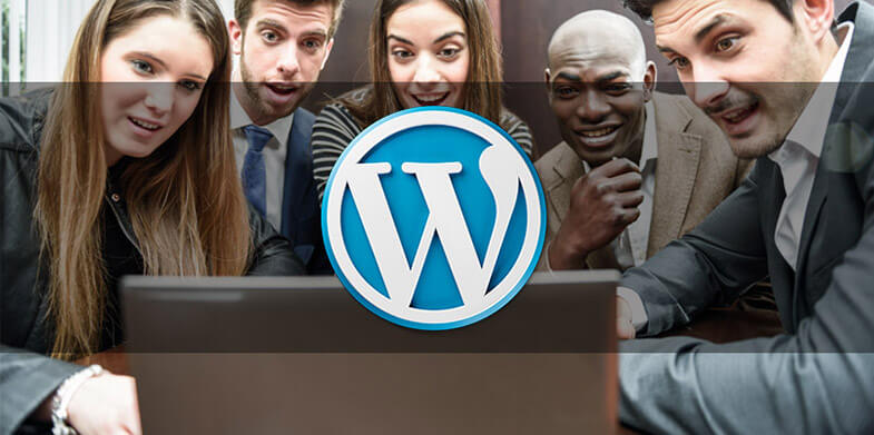 Wordpress-Themes1