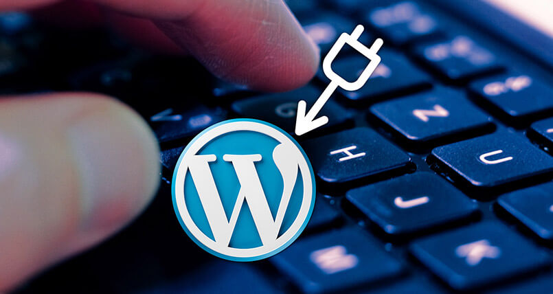 launch wordpress site