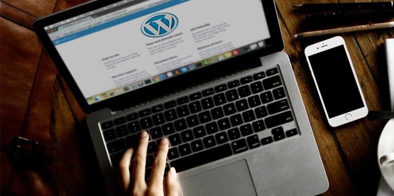 wordpress-website-needs