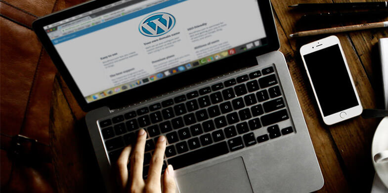 wordpress-website-needs