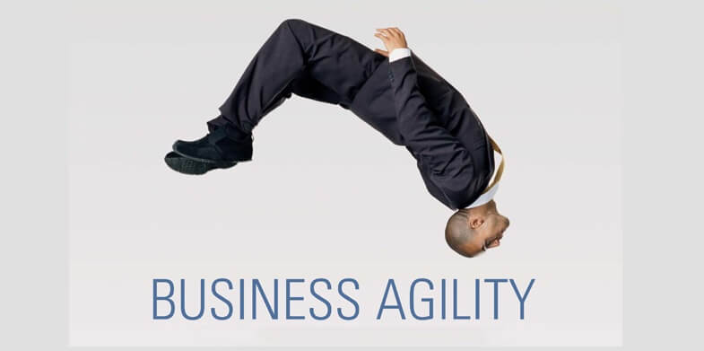 business agility - Successful Web Developers