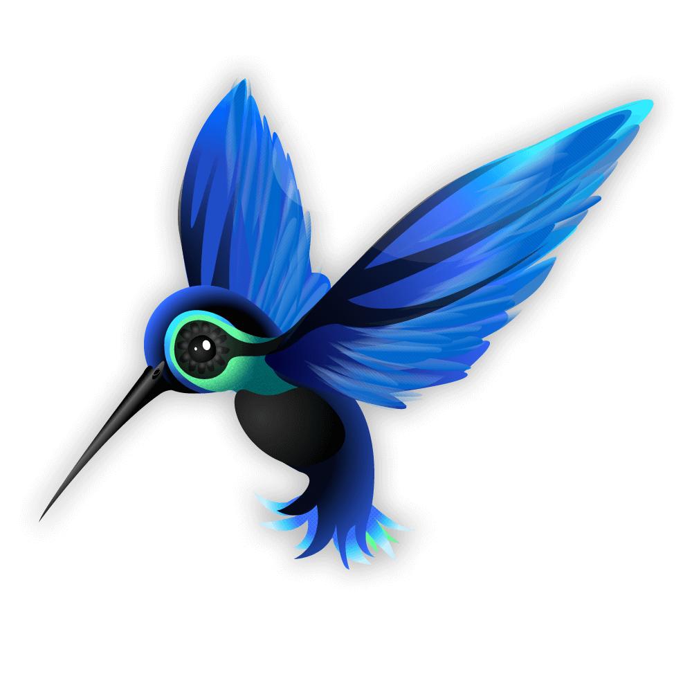 hummingbird-3