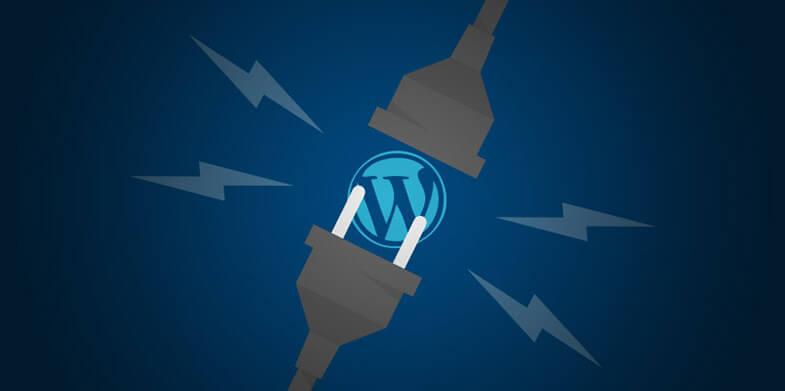 Ignoring These WordPress Plugins