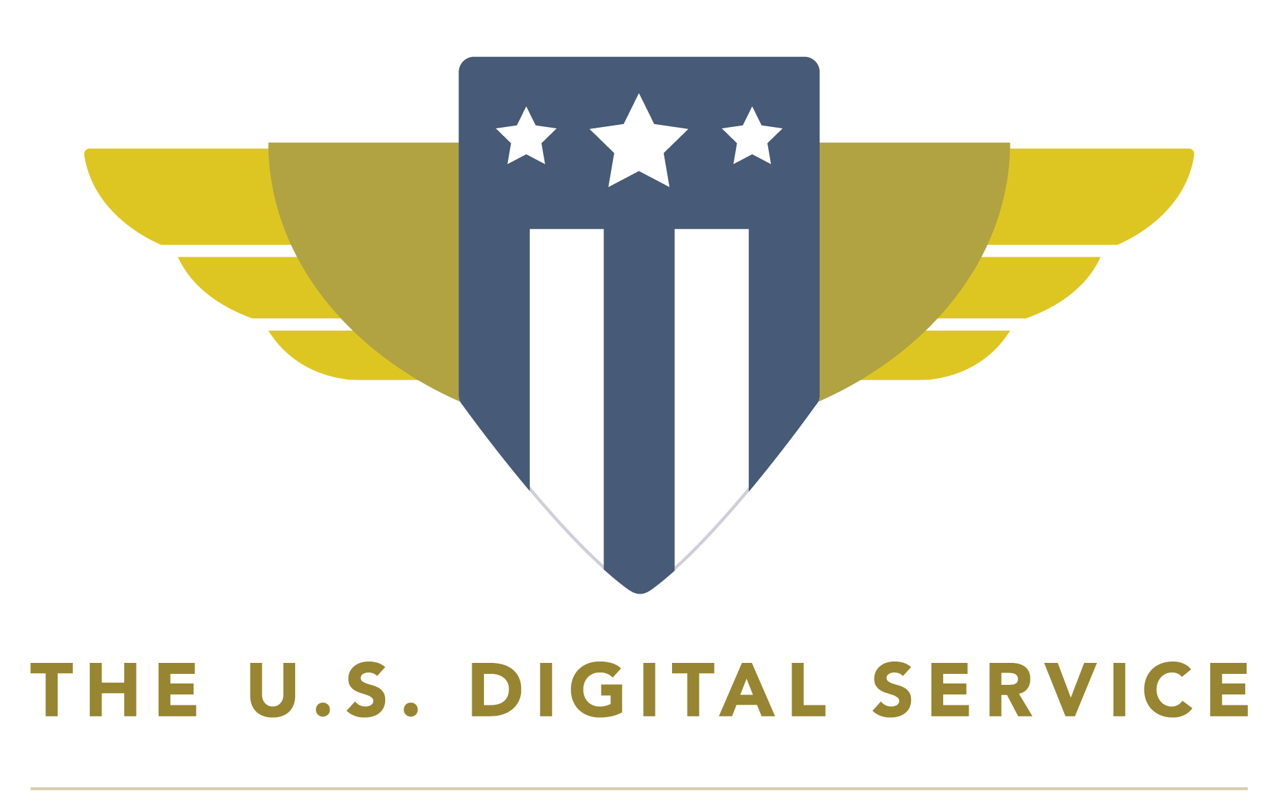 US Digital Service