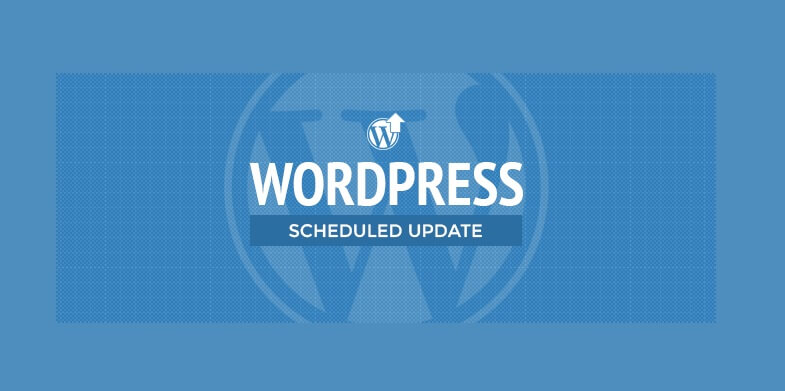 Ignoring WordPress Update