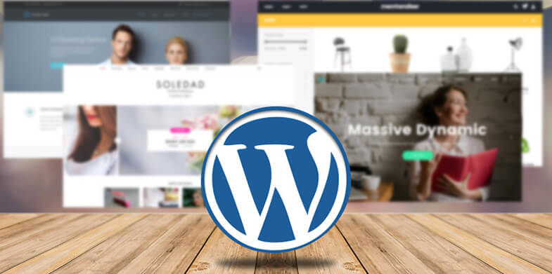 WordPress Themes of 2017