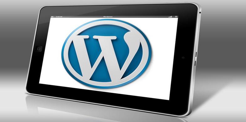First WordPress Themes