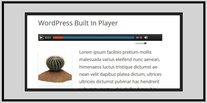 Wordpress Built in Player
