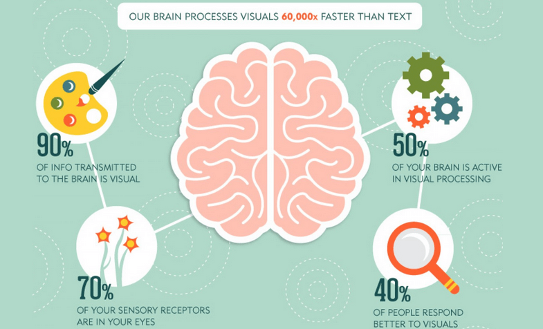Brain Process Visual