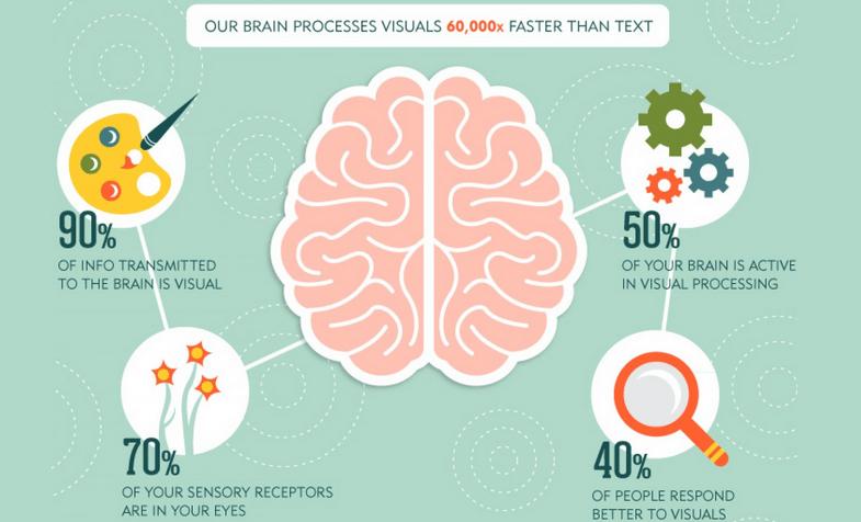 Brain Process Visual