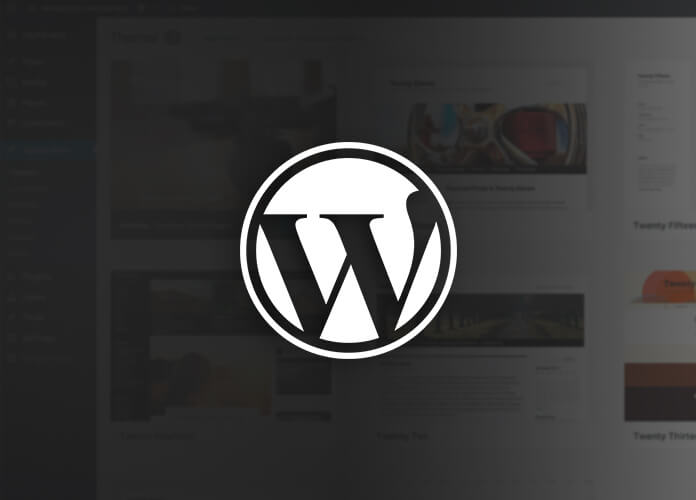 Best WordPress Guide