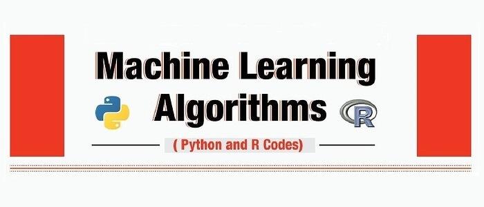 Python & R codes