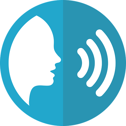 Voice vector