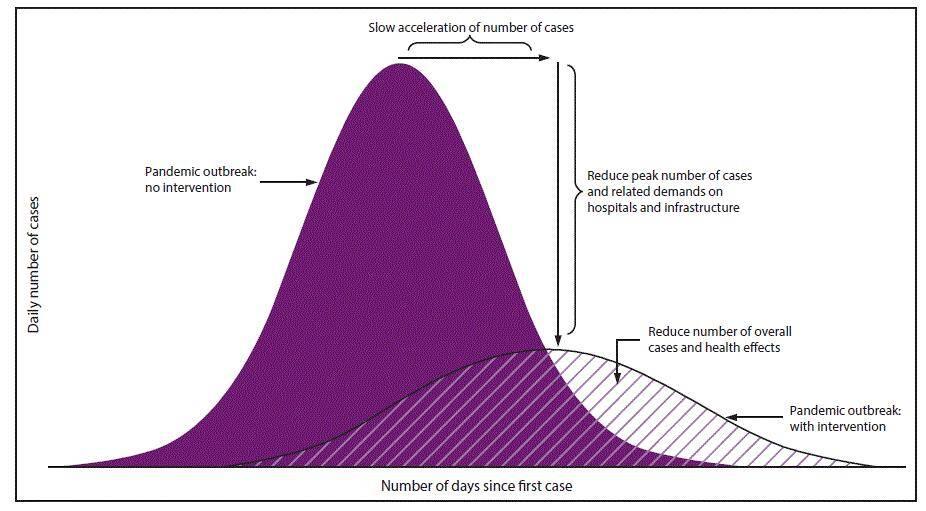 covid outbreak graph- 1